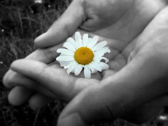 thoughts-generosity