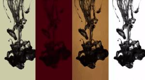 inside-chanel-couleurs